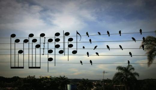 電線に止まった小鳥を楽譜にした結果・・・