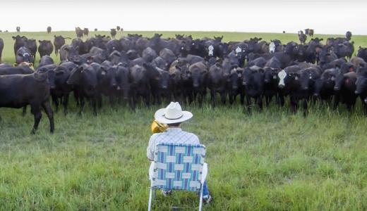 トロンボーンで大量の「牛」を呼び出す映像が1000万再生突破して話題に